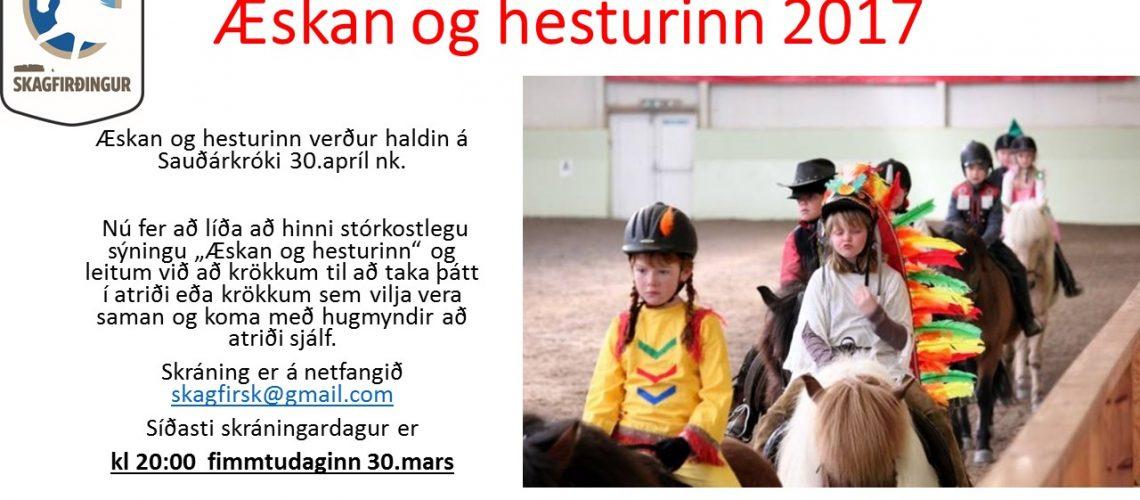 Æskan_og_hesturinn_2017.jpg