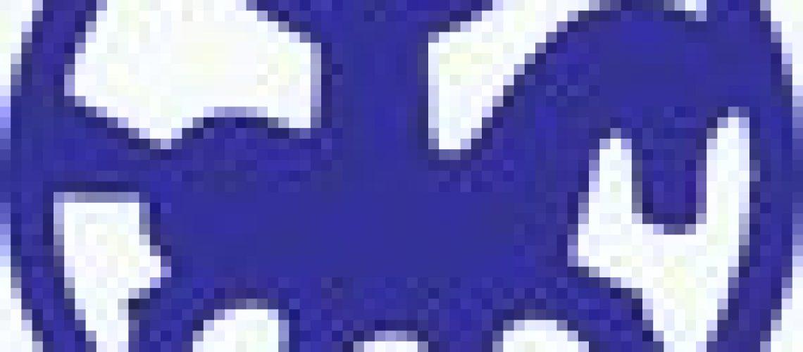 feif-logo-blue.jpg